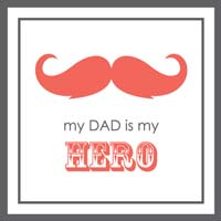 my true hero my father essay